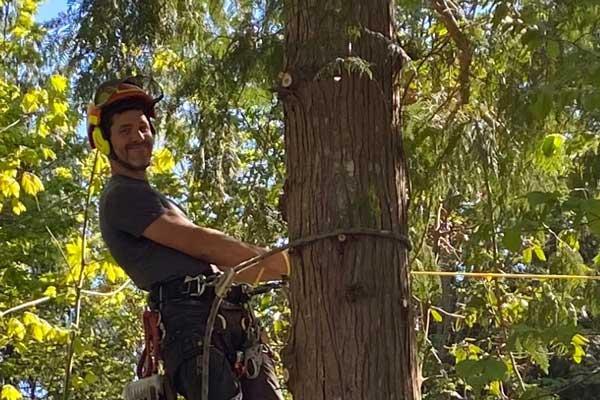 Tree Services Savary Island
